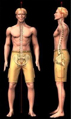 cervical lumbar spondylosis myelopathy