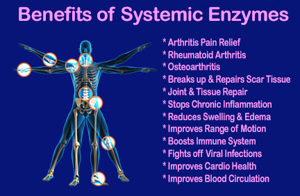 systemic enzymes for arthritis