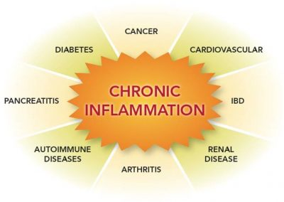 chronic inflammation and arthritis